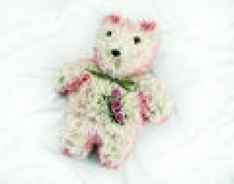 teddybear 19 x 15